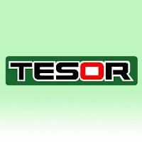 Tesor